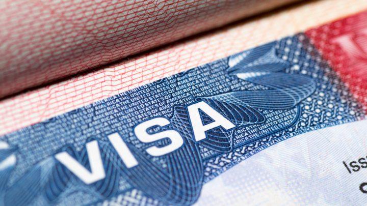 Visa holder