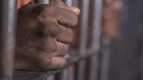 Dark male in custody