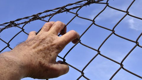 Prisoner holding onto barbed wire fence