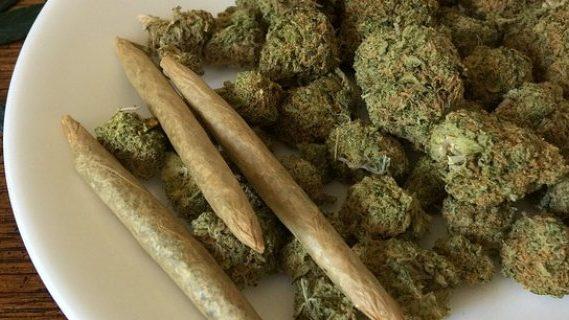 Cannabis on a plate