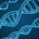 The Eternal Question – Is Criminality Genetic, Learned or Both – and does a 'Criminal' Gene Exist?