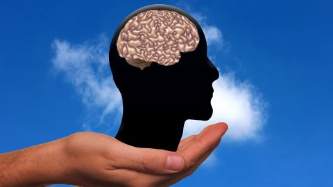 Holding brain figure