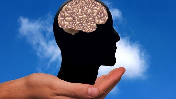 Hold brain in palm of hands