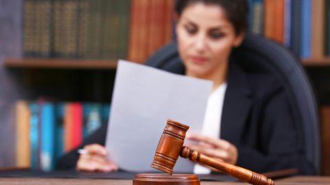 Judge reading