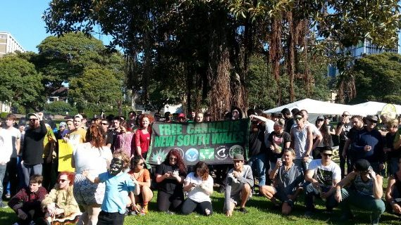 Free cannabis NSW 420