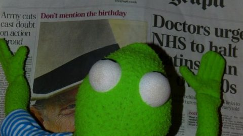 Kermit reading the Daily Telegraph