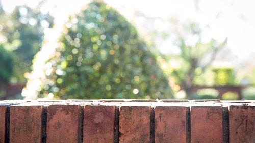 Neighbour fence