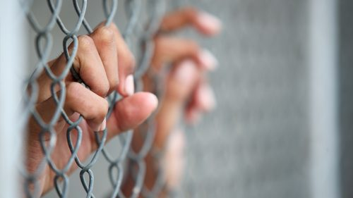 Hands of a child holding onto wire fence