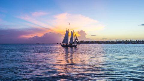 Florida sea