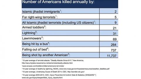 Statistics on American killed