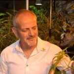 Medical Marijuana Innovation: An Interview With Andrew Kavasilas