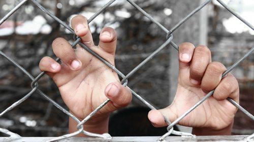 Child in custody