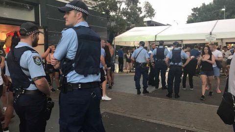 Police at a festival