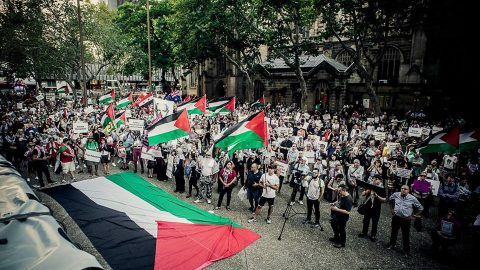 Palestine Action Group