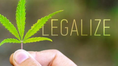 cannabis legalise