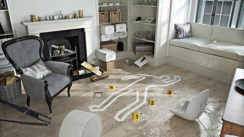 Domestic murder