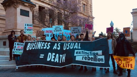 Extinction Rebellion Activists