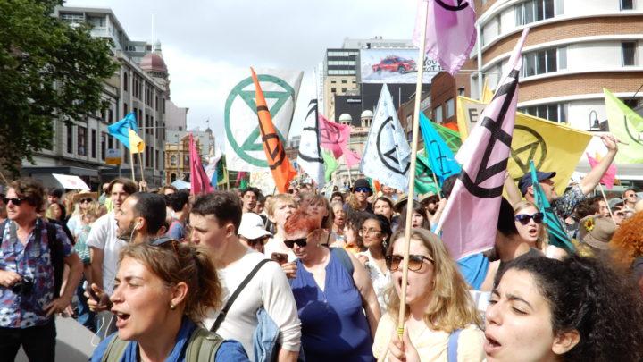 Extinction protest