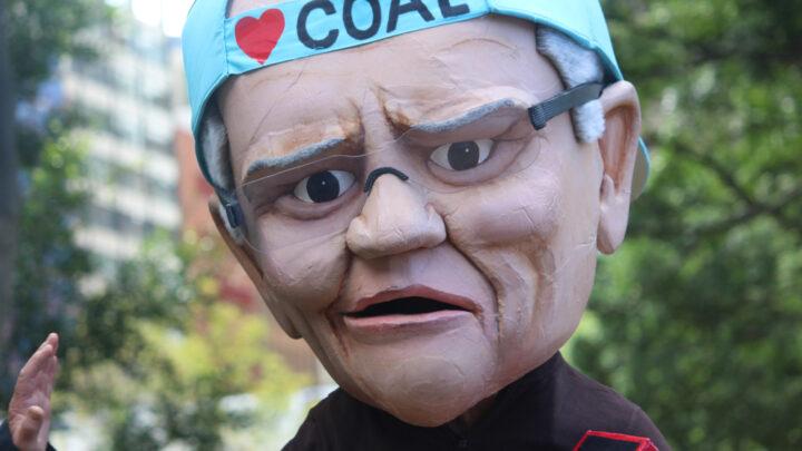 Morrison and coal