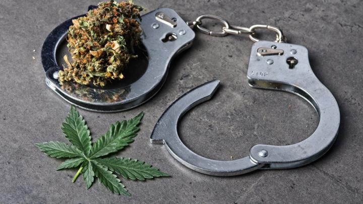 Drug decriminalisation