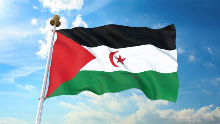 Sahara flag