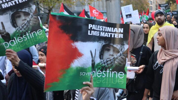 Palestinian lives