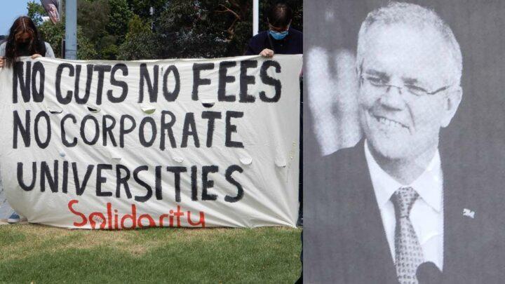 Crippled Universities