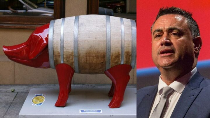 Pork Barrelling