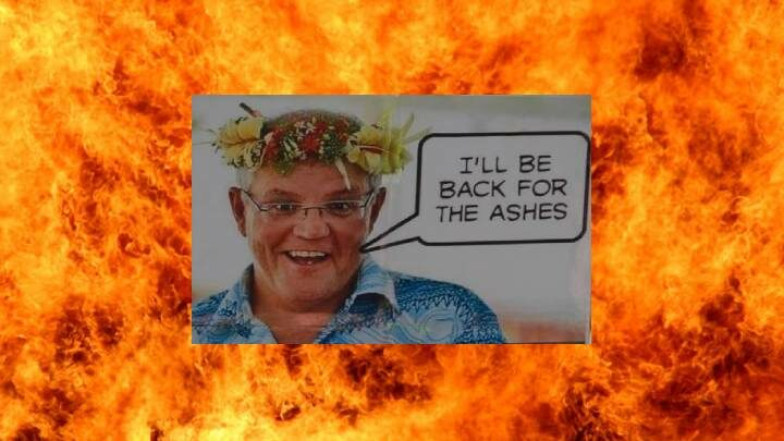 Morrison and Ashes